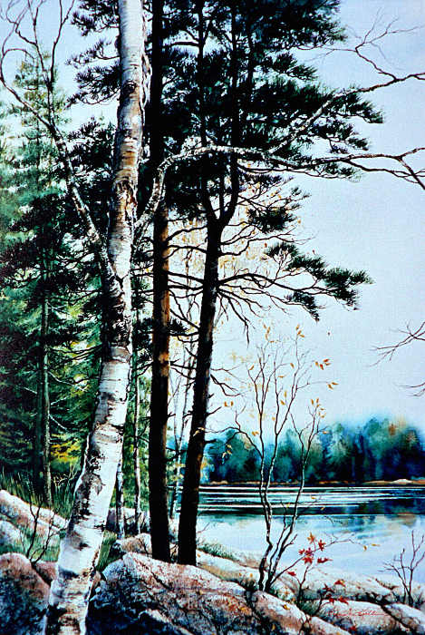 painting lake landscape in summer