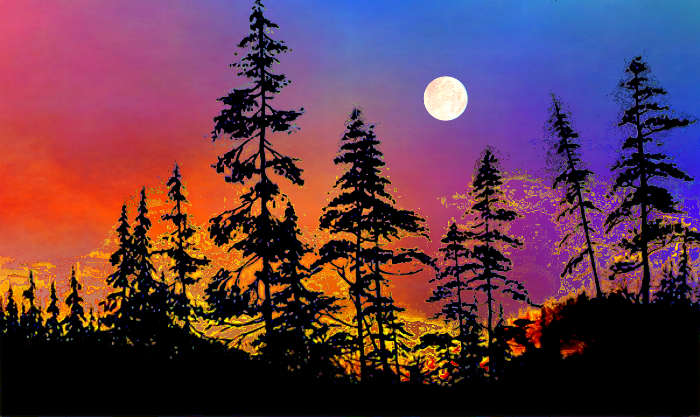 sunset silhouette painting