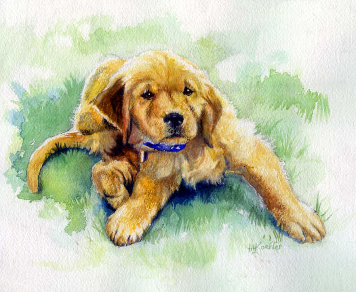 Labrador Retriever puppy portrait