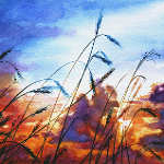 colorful painting of wheatfield  prairie sky