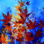 painting of vibrant colorful autumn maple leaves