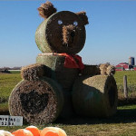 photo of whistle bear hay bale stacks and pumpkins