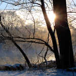Misty river sunrise winter art photography