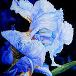 Painting Acrylic Flowers A-Z images by Hanne Lore Koehler